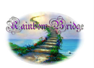 rainbowbridge.jpg